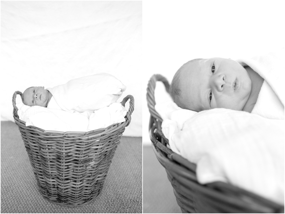 Richa-Newborn-2014-99.jpg