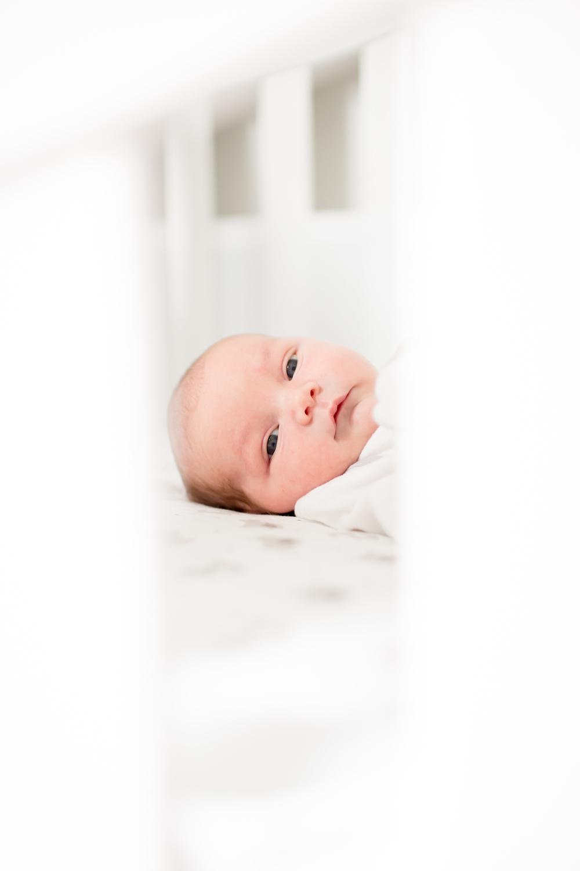 Jacobson Newborn-29_anna grace photography virginia newborn photographer photo.jpg
