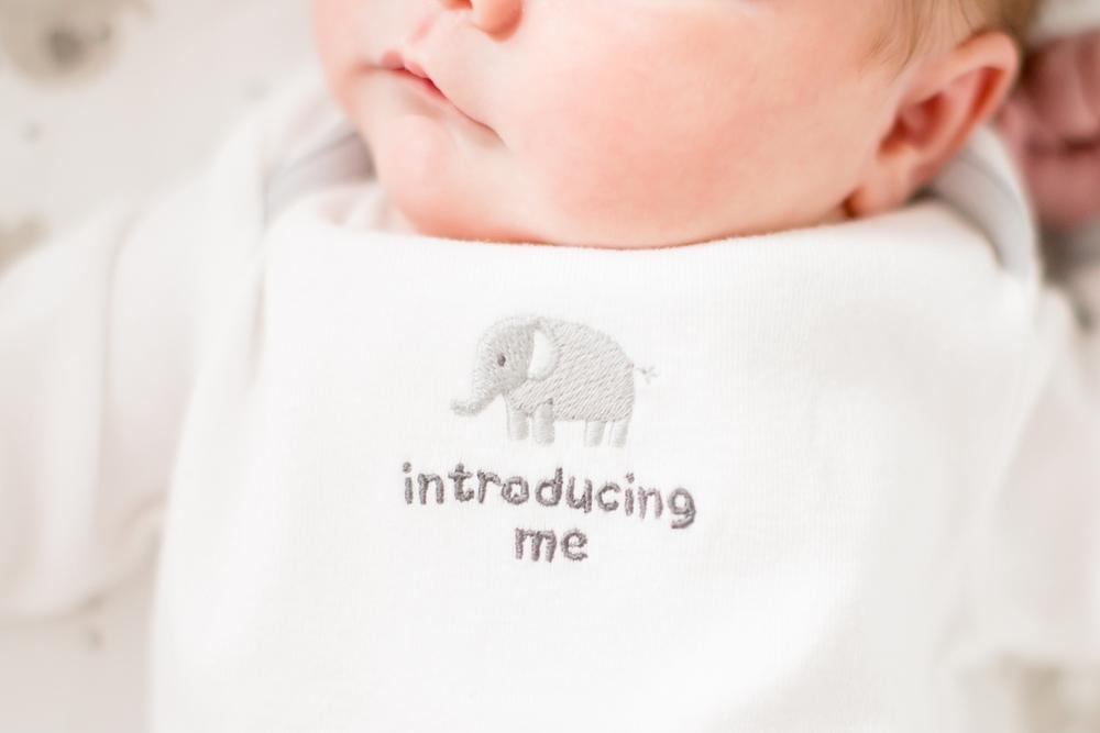 Jacobson Newborn-37_anna grace photography virginia newborn photographer photo.jpg