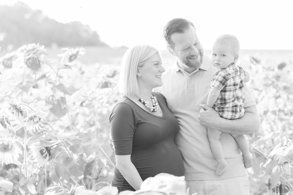 Andrews Family 2016-15_anna grace photography baltimore maryland maternity family photographer sunflower field photo.jpg