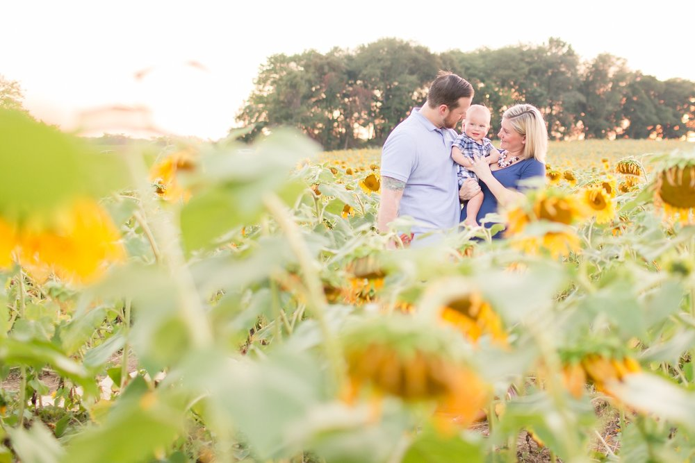 Andrews Family 2016-284_anna grace photography baltimore maryland maternity family photographer sunflower field photo.jpg