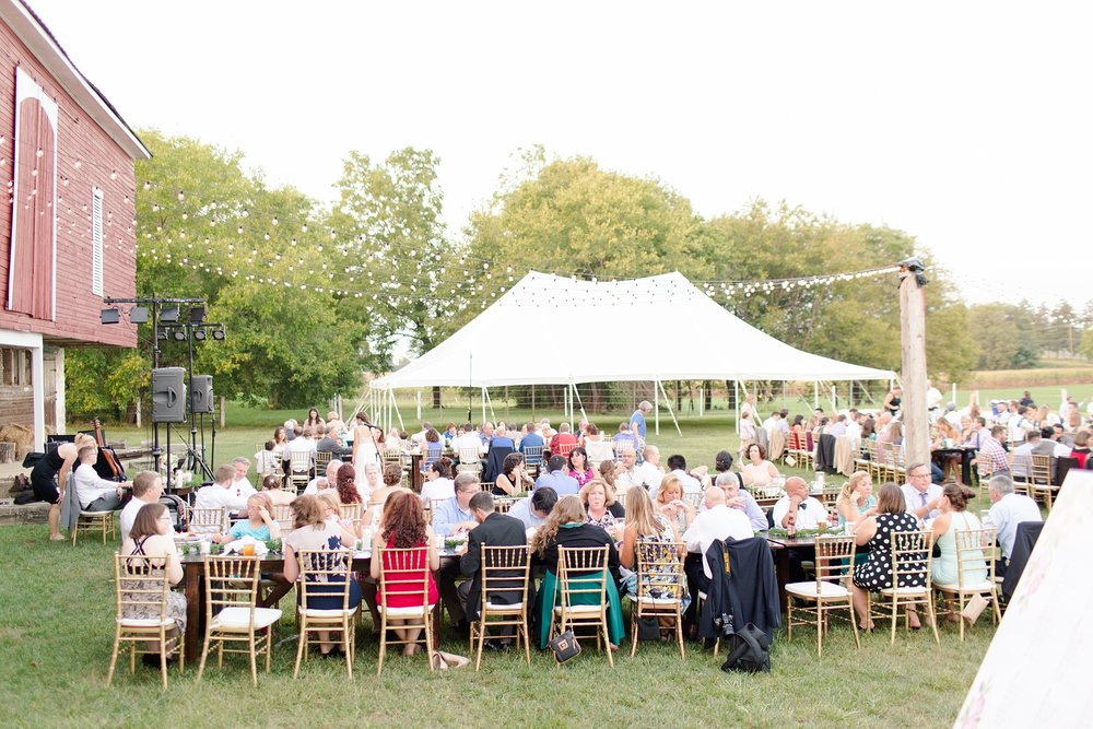 Tomaszewski 7-Reception-289-jpg_anna grace photography baltimore maryland wedding photographer rockland estates wedding photo.jpg
