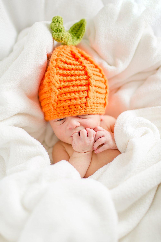 Maple Newborn 2016-146_anna grace photography baltimore maryland newborn and family photographer photo.jpg