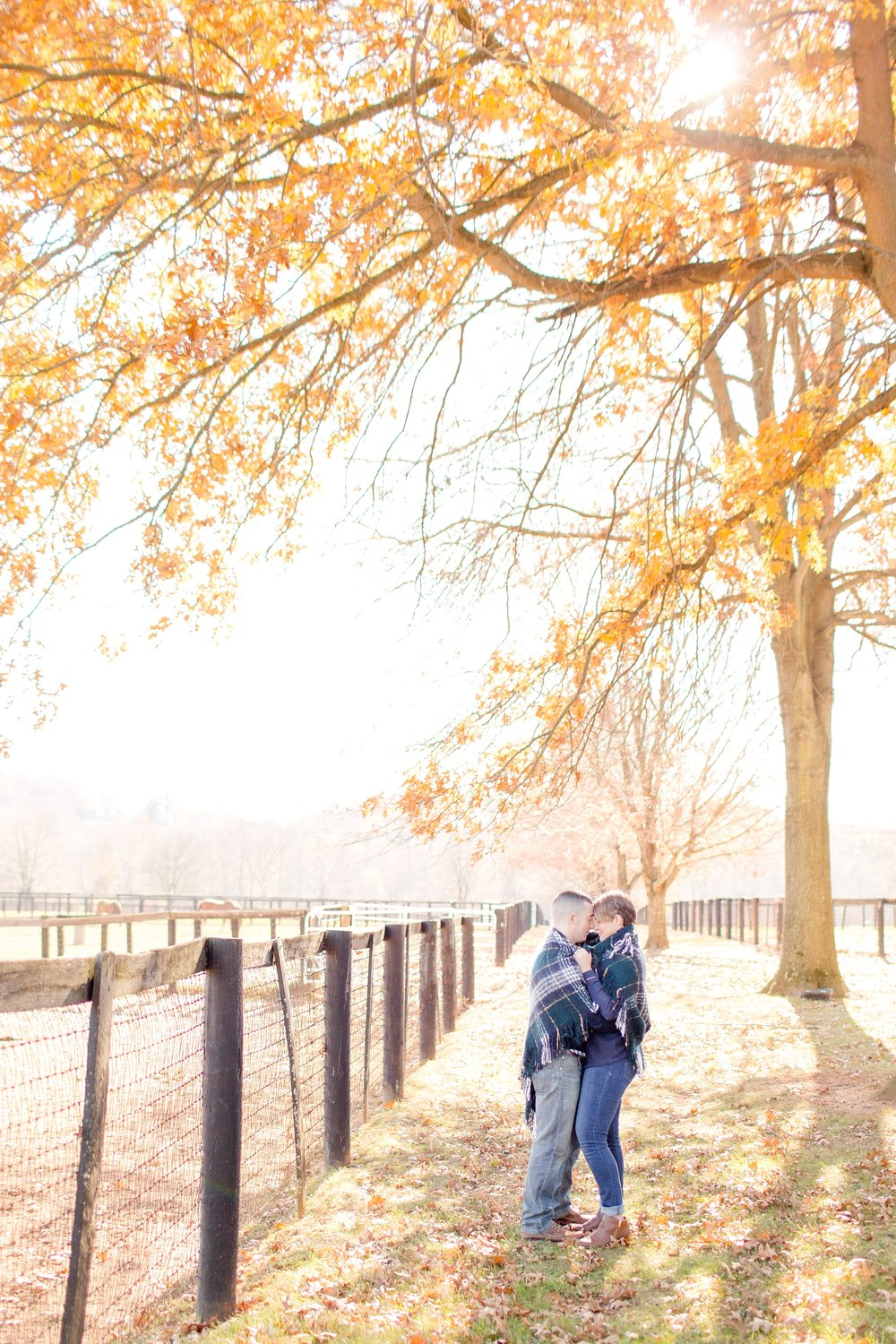 Emily & Joe Engaged-229_anna grace photography baltimore maryland wedding and engagement photographer helmore farm photo.jpg