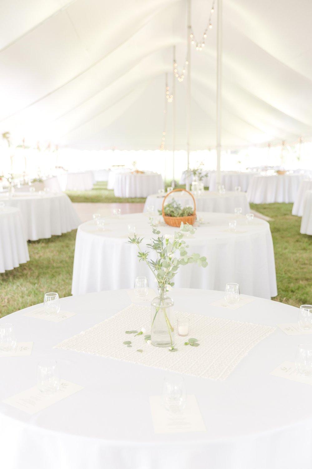 COWAN WEDDING HIGHLIGHTS-165_olde-river-farm-virginia-wedding-photography-photo.jpg