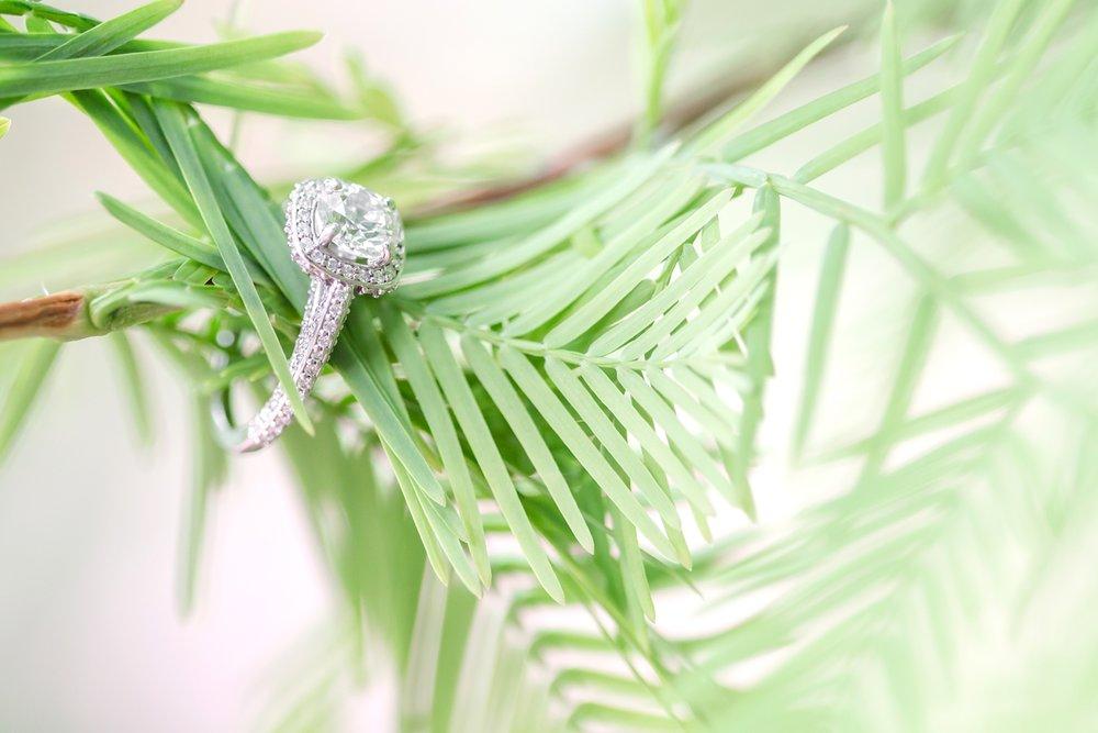 Whitney & Kelvin Engagement-155_whitehall-manor-estate-wedding-photography-virginia-wedding-photographer-anna-grace-photography-photo.jpg