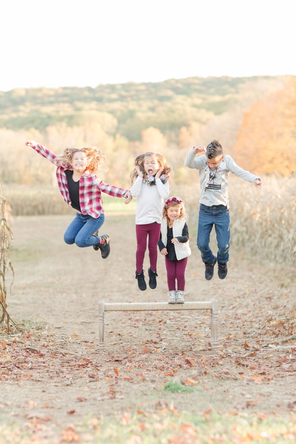 Weddle Family-298_baltimore-maryland-family-photographer-ravens-family-photos-anna-grace-photography-photo.jpg