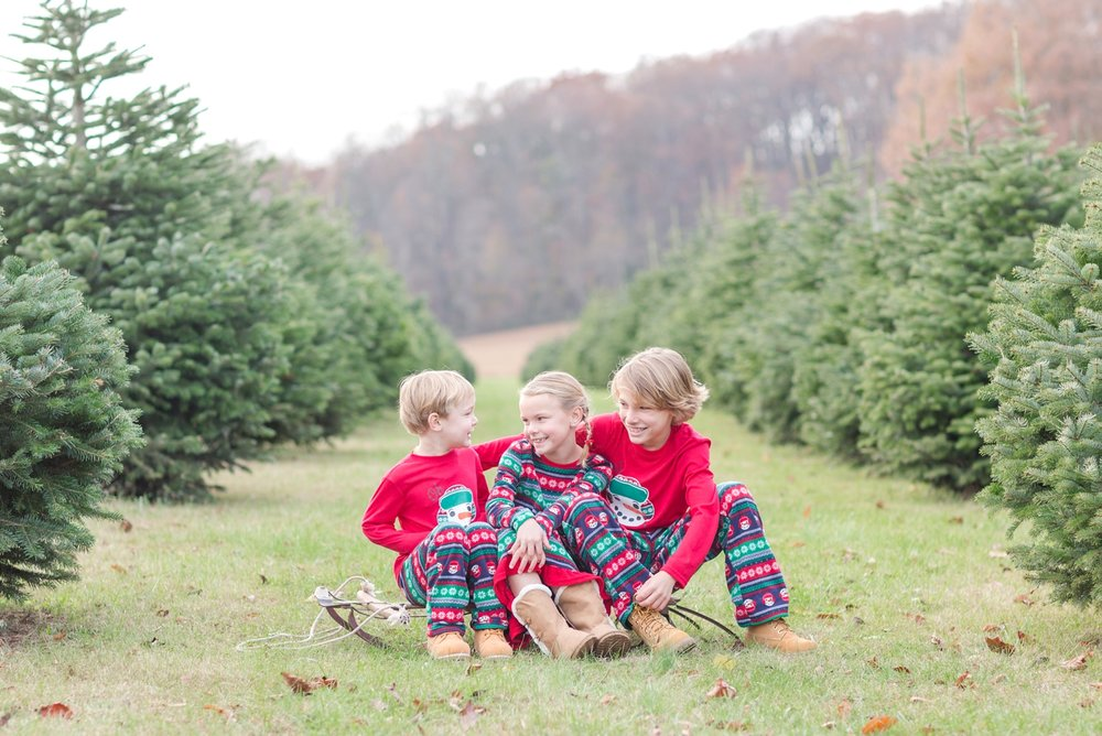 Golembiesky Family 2017-28_ruhl-tree-farm-baltimore-maryland-family-photography-anna-grace-photography-photo.jpg