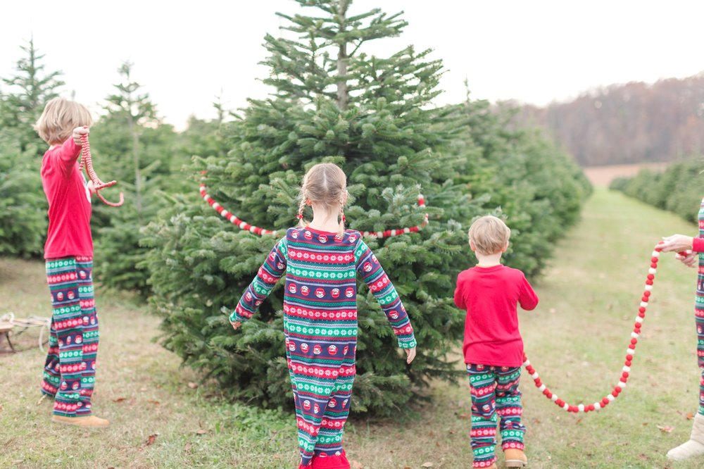 Golembiesky Family 2017-72_ruhl-tree-farm-baltimore-maryland-family-photography-anna-grace-photography-photo.jpg