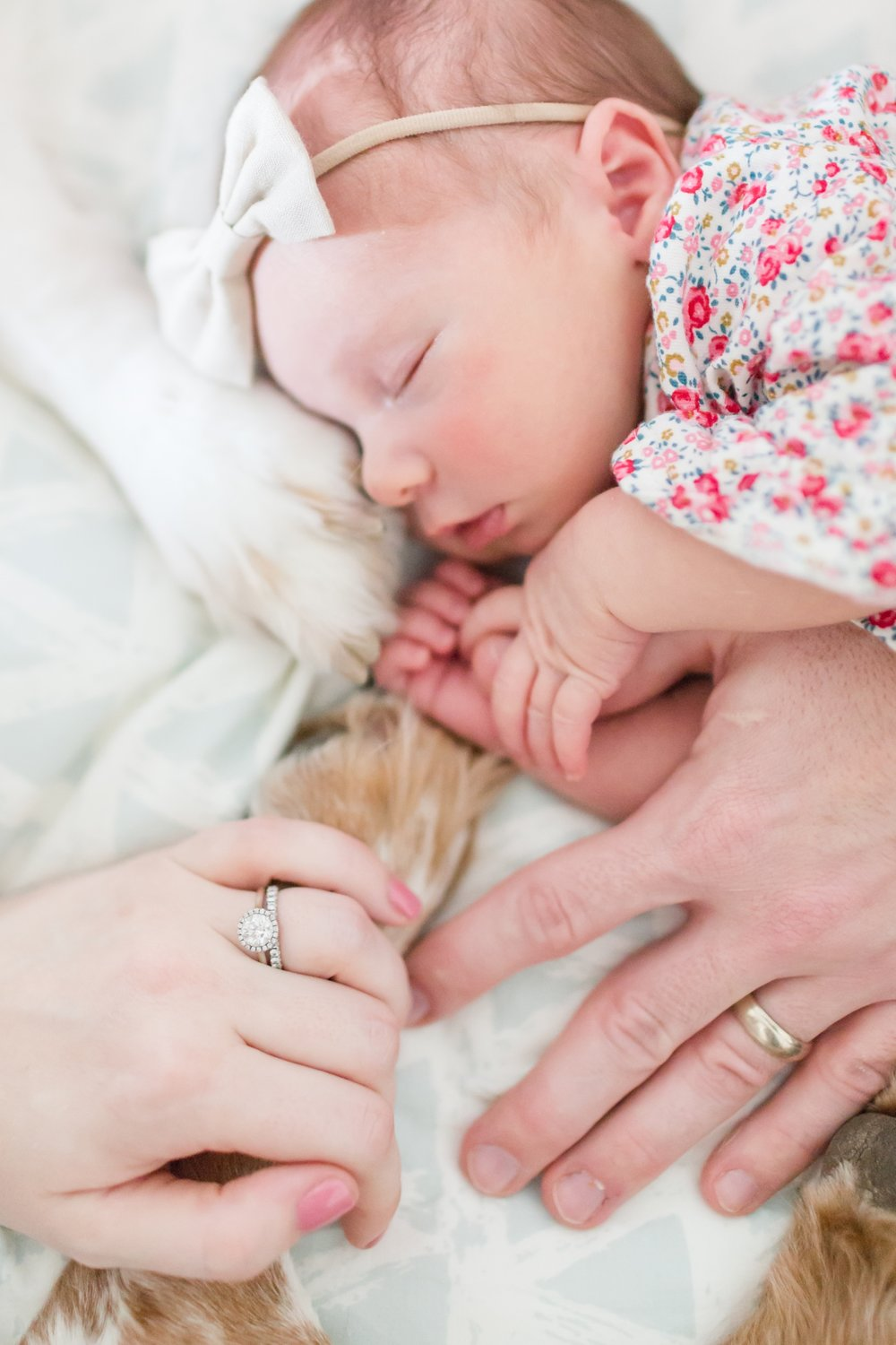 Martin Newborn-294_maryland-virginia-alexandria-newborn-photographer-anna-grace-photography-photo.jpg