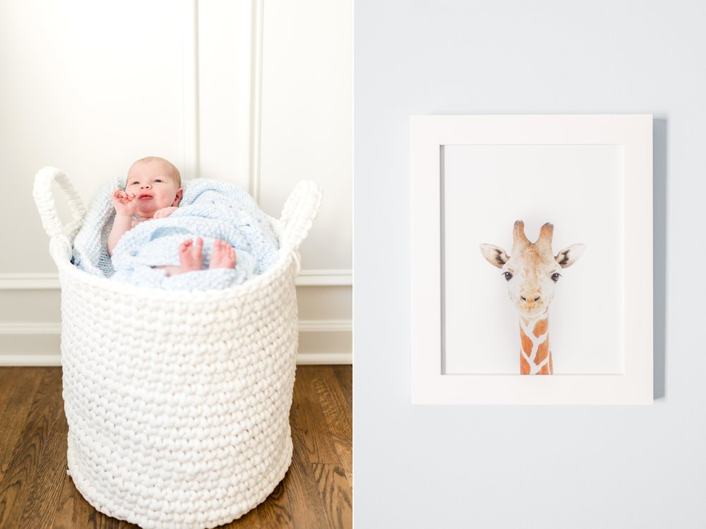 Waldner Newborn-49_maryland-newborn-photographer-anna-grace-photography-photo.jpg