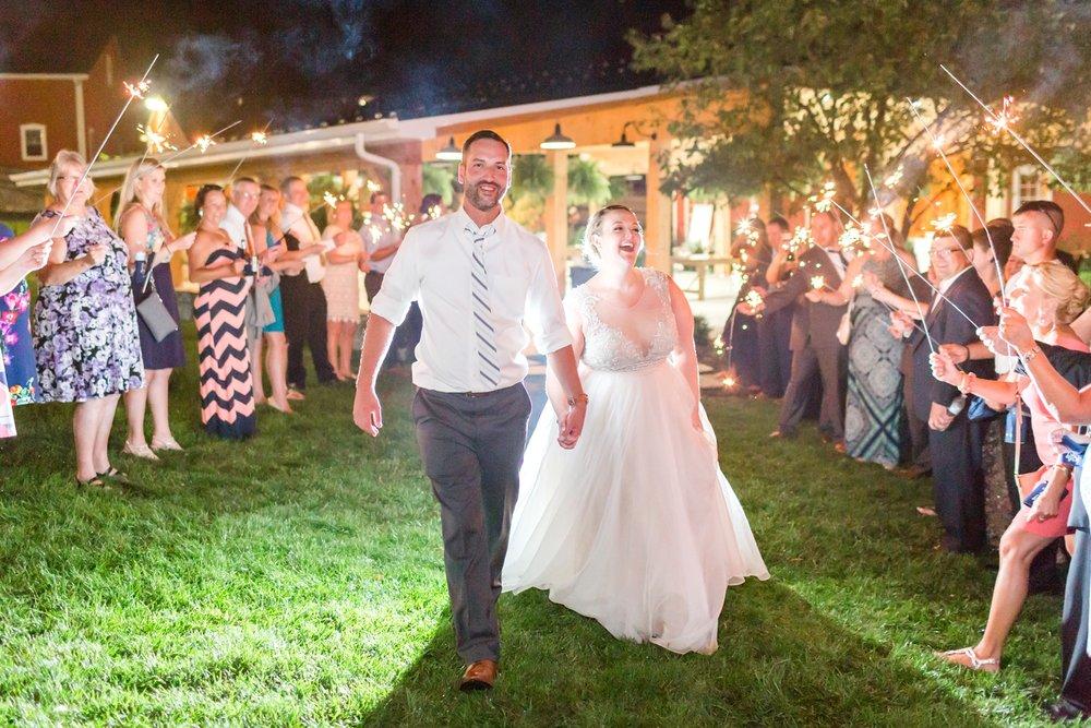 WINKLER WEDDING HIGHLIGHTS-438_pond-view-farm-wedding-maryland-wedding-photographer-anna-grace-photography-photo.jpg