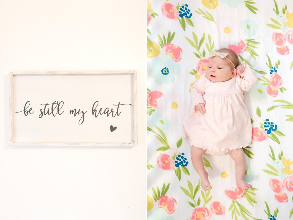 Hallie Newborn-31_Maryland-newborn-Family-photographer-anna-grace-photography-photo.jpg