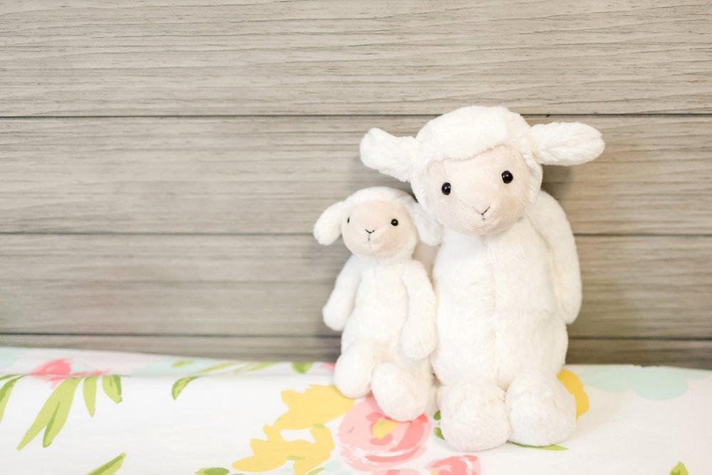 Hallie Newborn-40_Maryland-newborn-Family-photographer-anna-grace-photography-photo.jpg