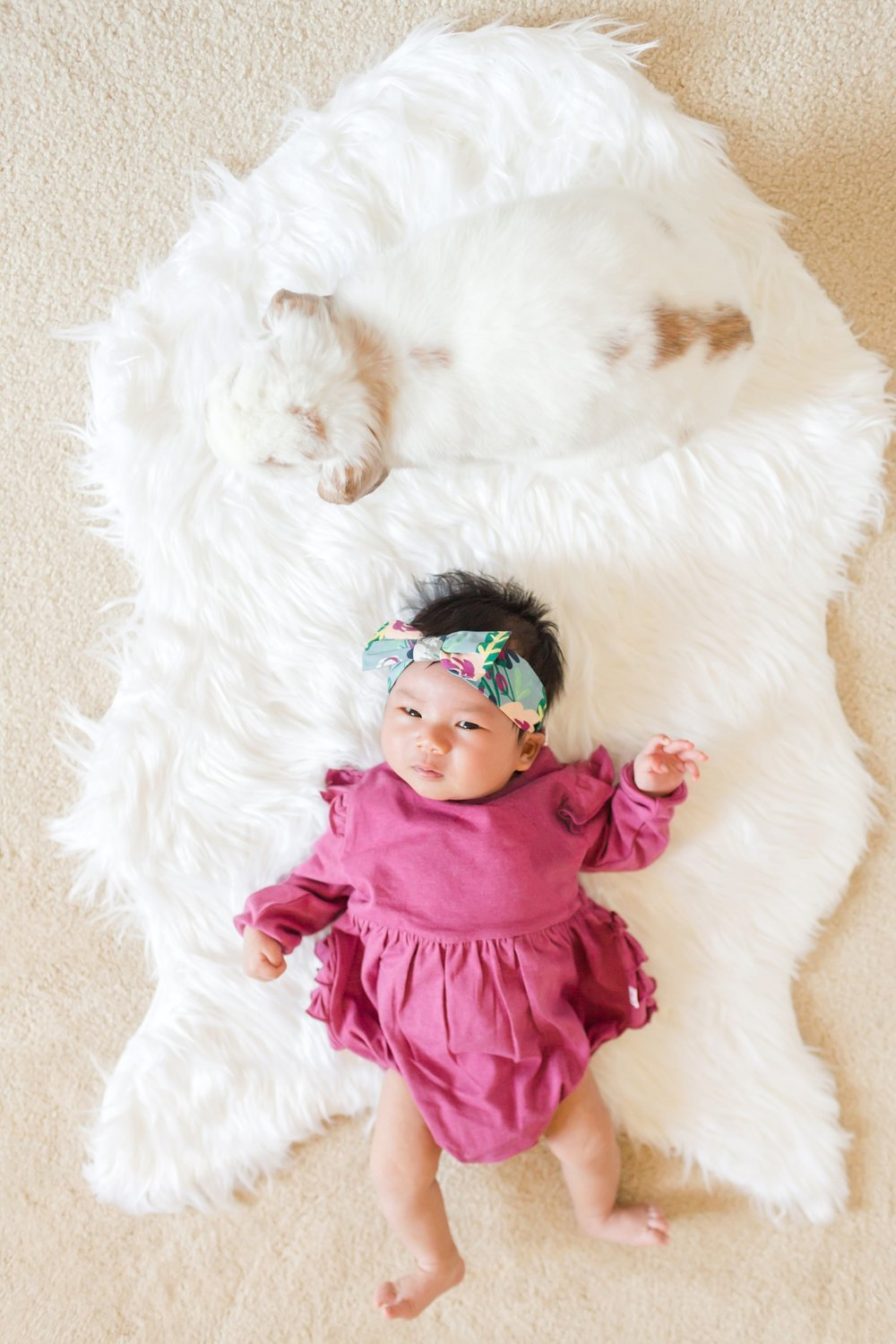 See more from   baby Chloe's newborn session here  !