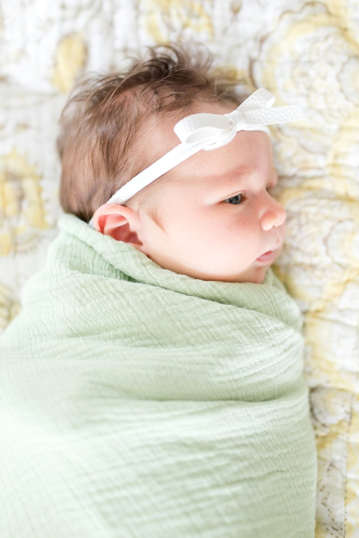 Hazel Newborn 2019-70_Baltimore-Maryland-newborn-family-photographer-anna-grace-photography-photo.jpg