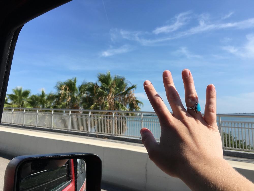 clearwater fl trip 1