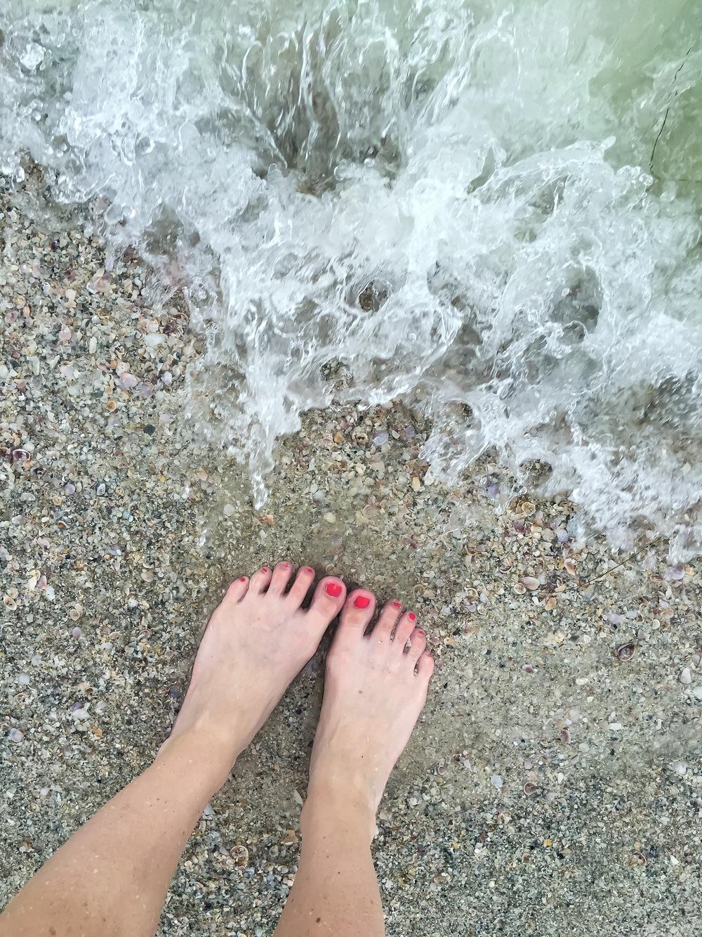 clearwater fl trip 3