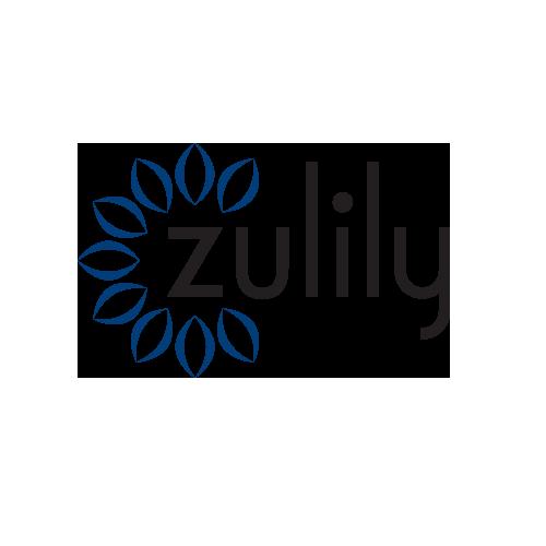 zulily-color.transparent.NC4K.png