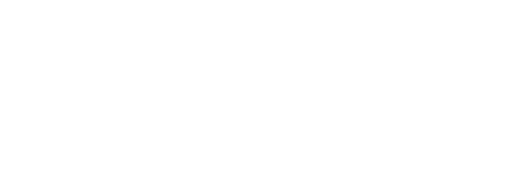 Sports-Ireland_Logo_English_WHITE.png