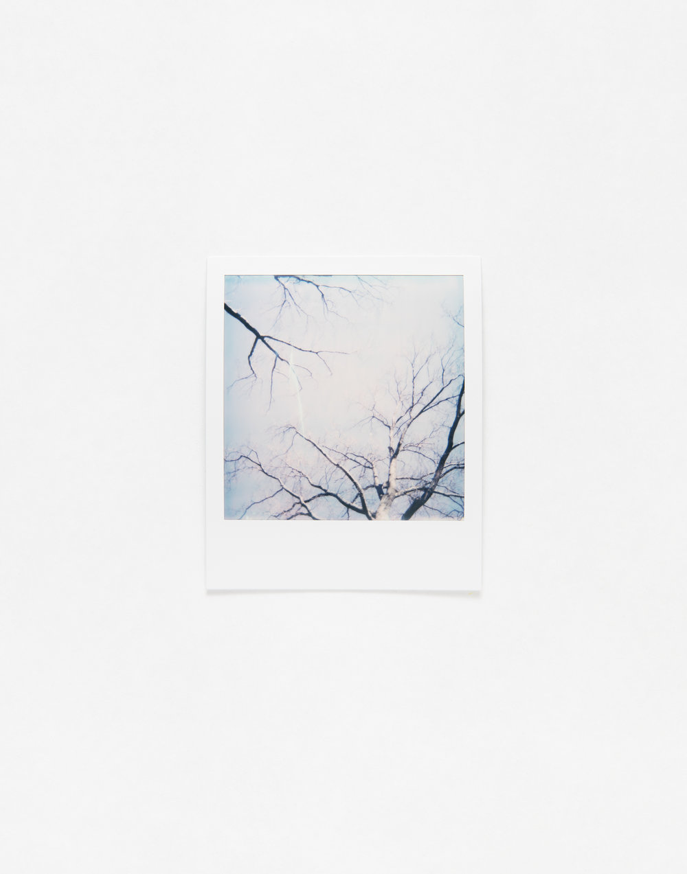 180331_Polaroid_0015.jpg