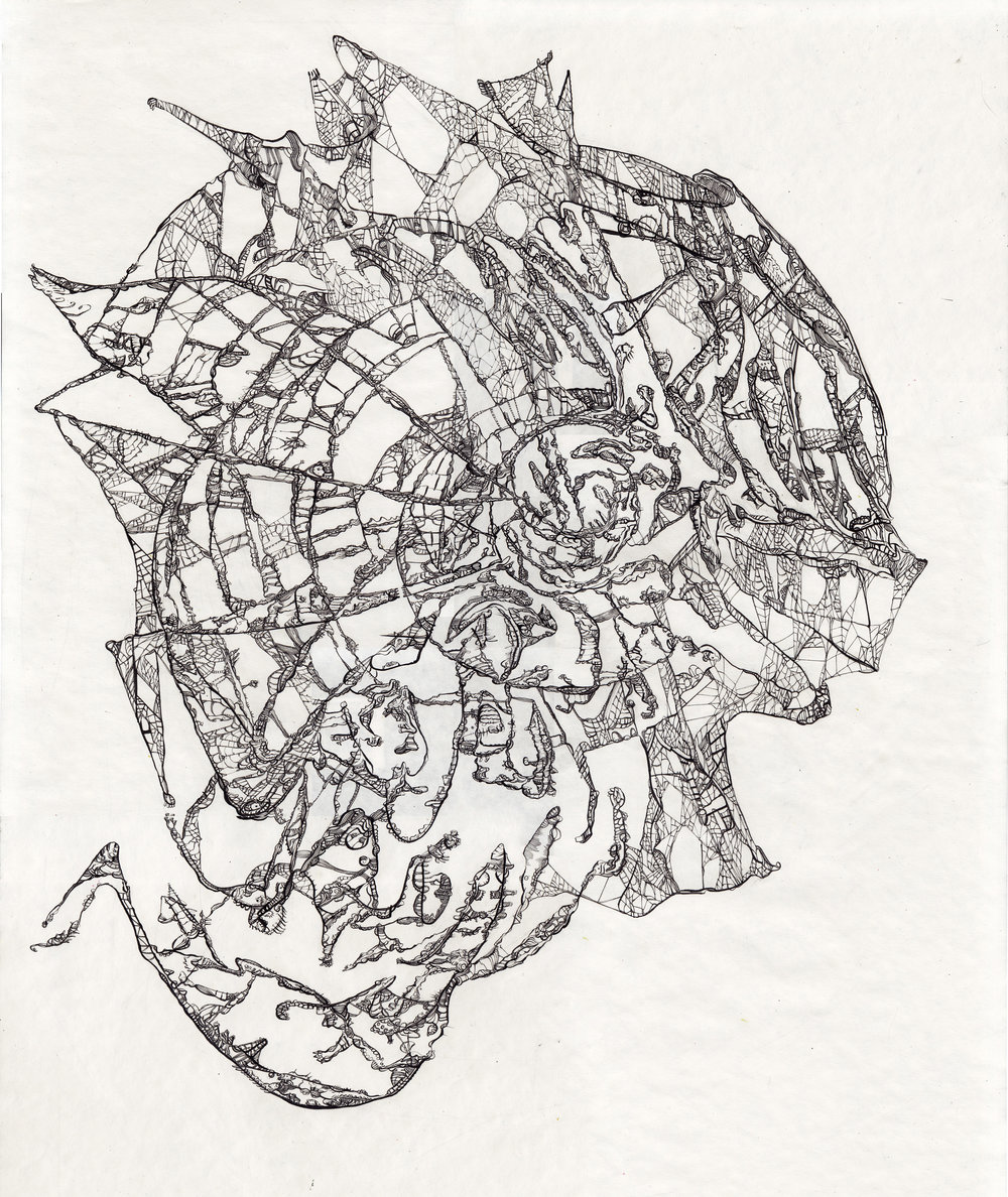 """""""This is the visual equivalent of a love poem""""   Pen & Ink on Paper  20"""" x 22"""" 45 230 little black lines"""