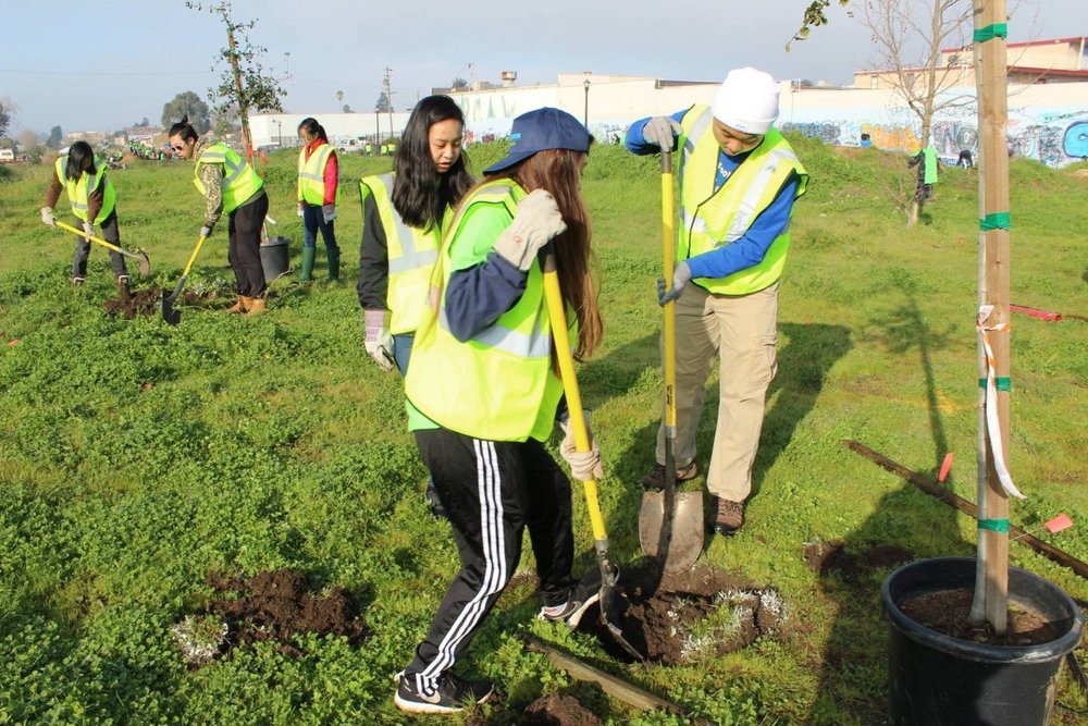 Groundwork Richmond Green Team youth plant trees along the Richmond Greenway.