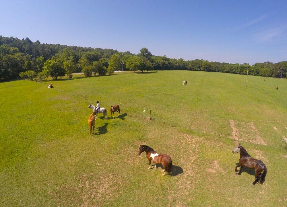 GR web boarding drone.jpg