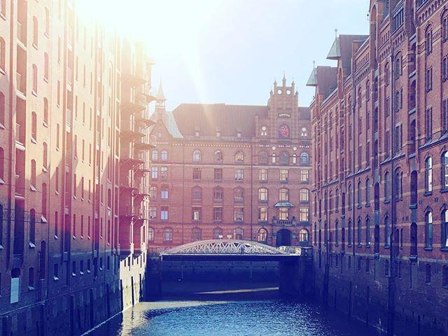 evening sun, HH edition. • #ahoihamburg #hamburgmeineperle #eveningsun #instapic #picoftheday #fridaontour