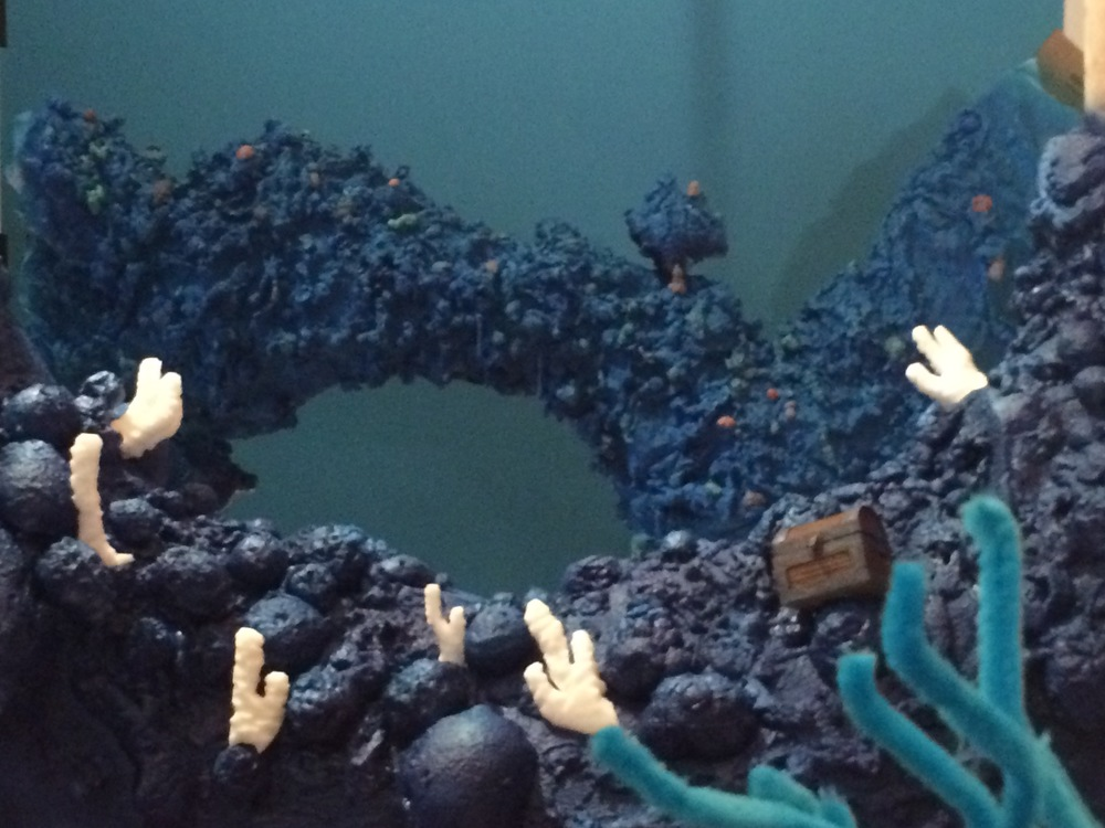 Coral progress 02