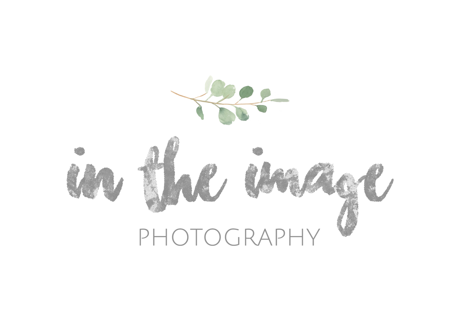 In the Image Photography