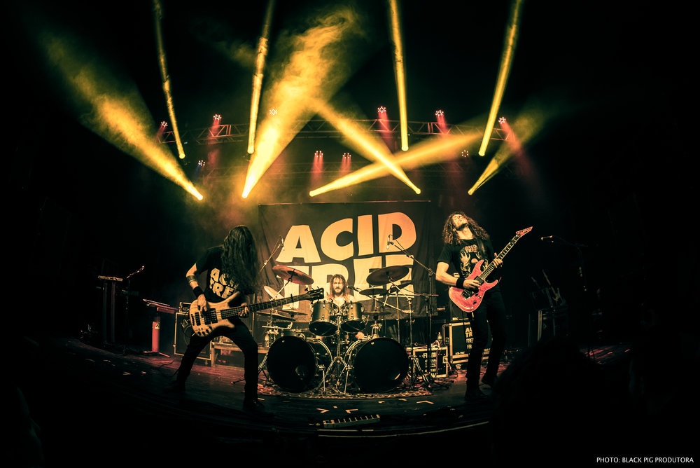 Acid Tree Ros Tour BH 33.jpg
