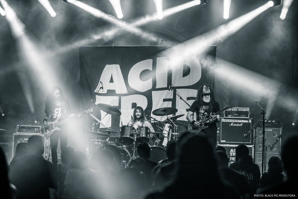 Acid Tree Ros Tour BH 42.jpg