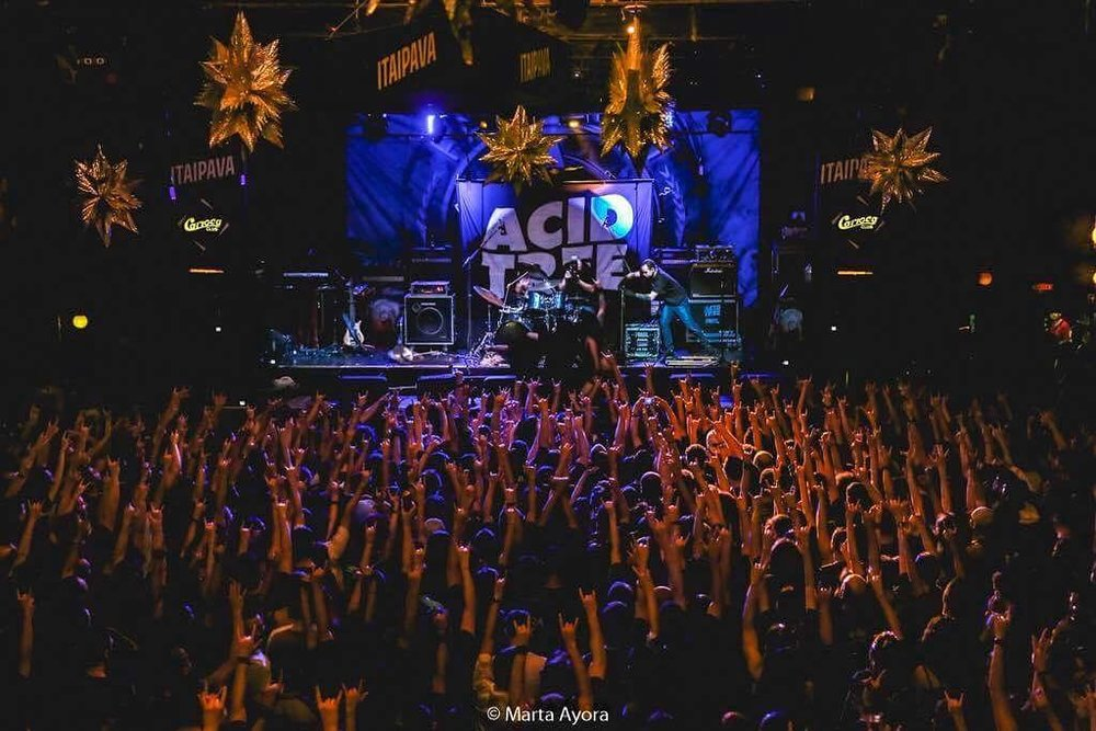 Acid Tree Ros Tour SP 42.jpg