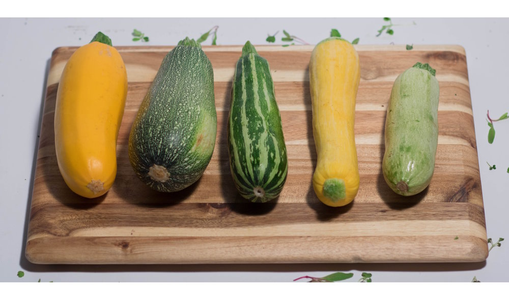 Asprocolas Acres - 102723A - Squash - Heirloom - Mix [Limited] - 6.25.18.jpg