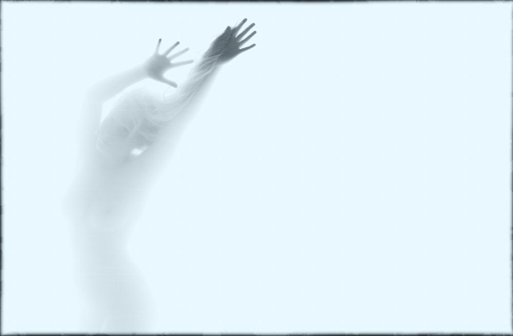 Bernard_Panier-Transparent-003.jpg
