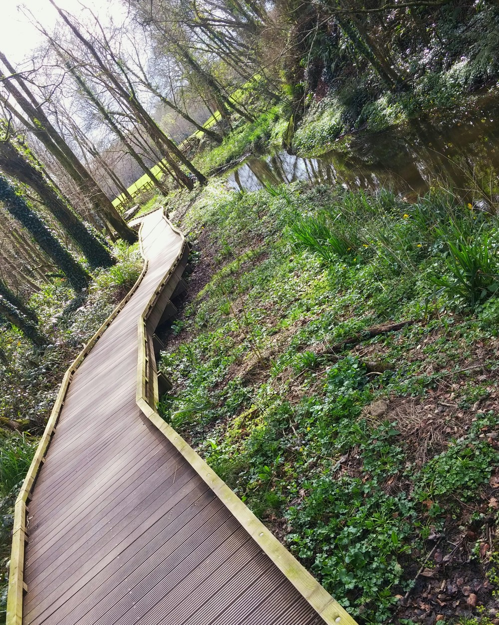 These floating boardwalks take travelers all throughout the grounds of Blarney Castle. It led me to ancient superstitious landmarks such as the Wishing Steps, the Witch's Kitchen, the Druid's Circle, and a number of sacred Celtic altars.