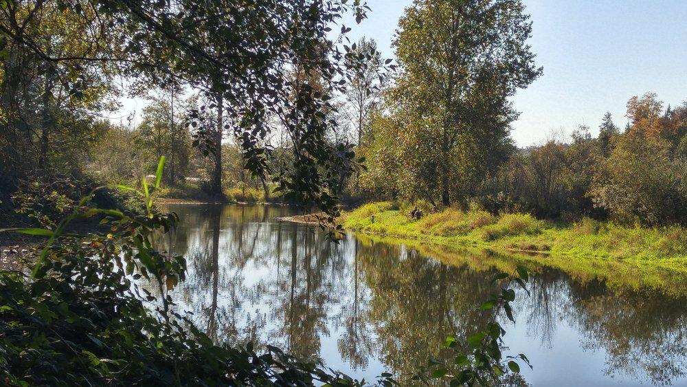The Trinity Pond