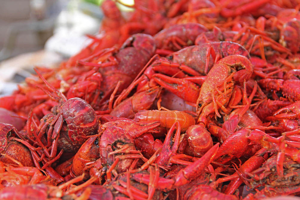 Naris-Cajun-Caribbean-Food-Houston-crawfish.jpg