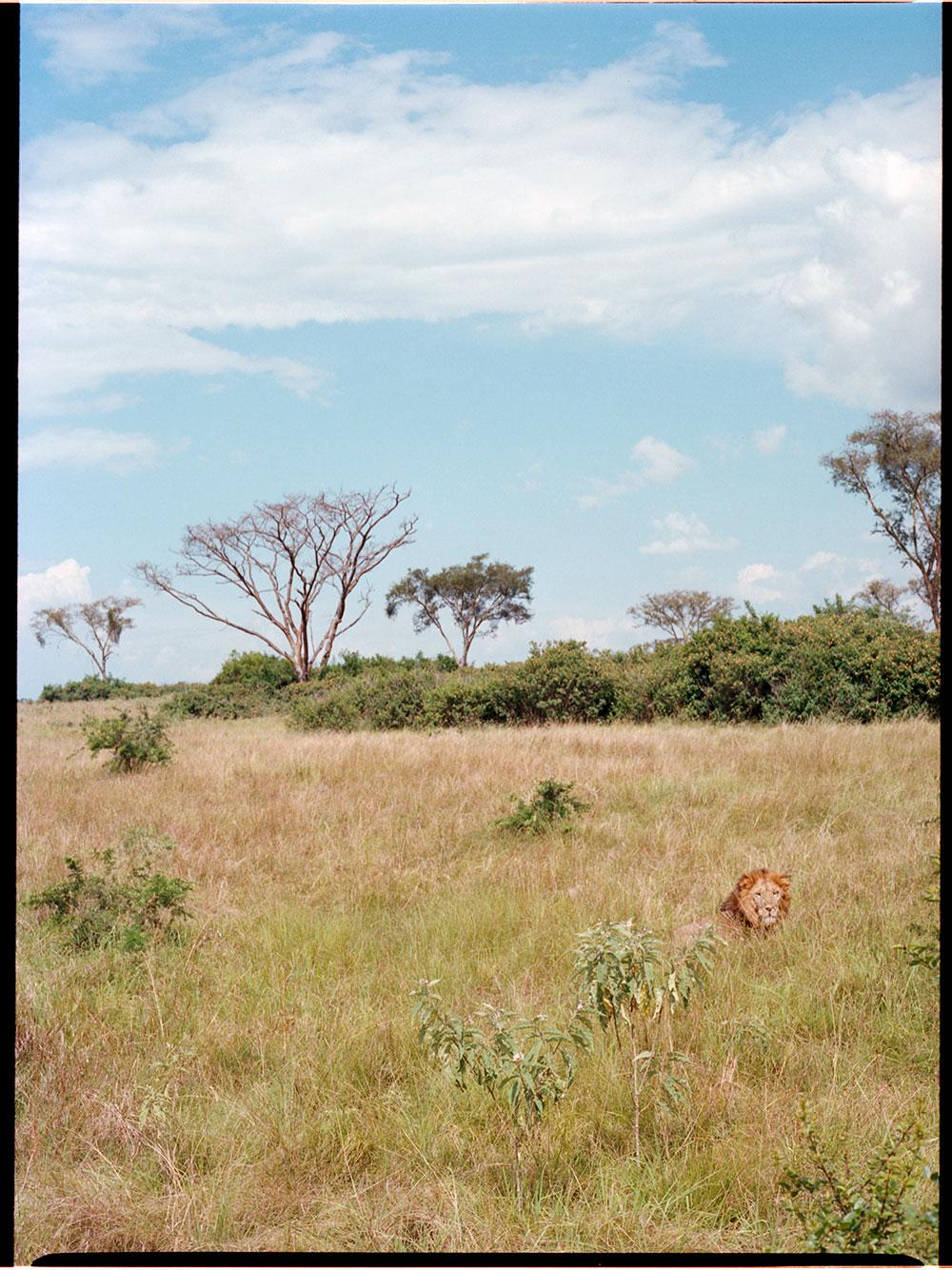 Uganda_MF_-(11).jpg