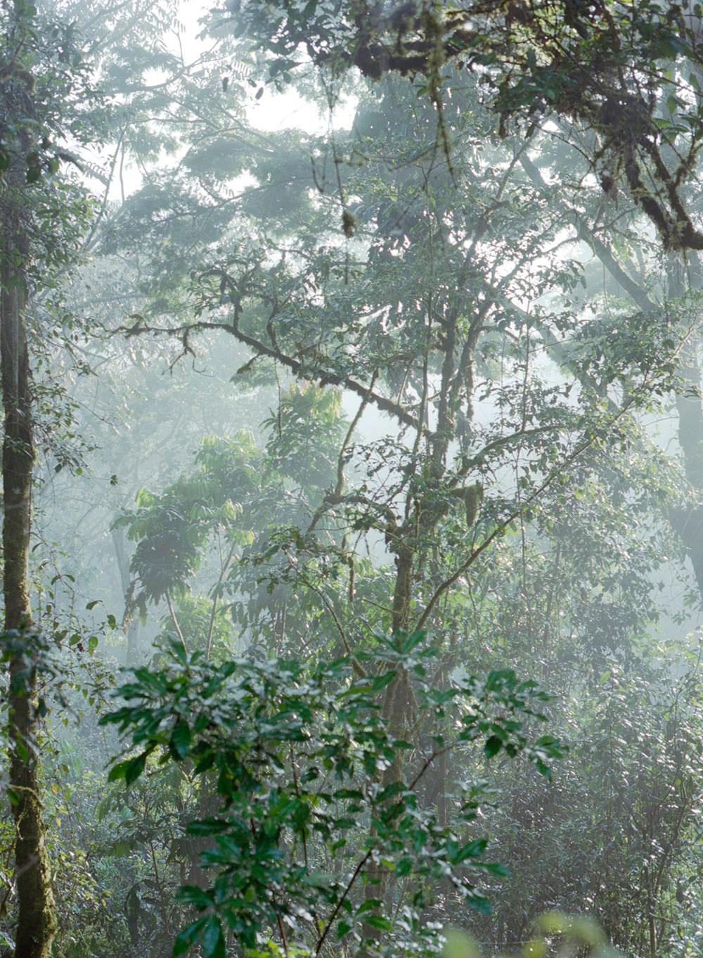 uganda2012-(5).jpg