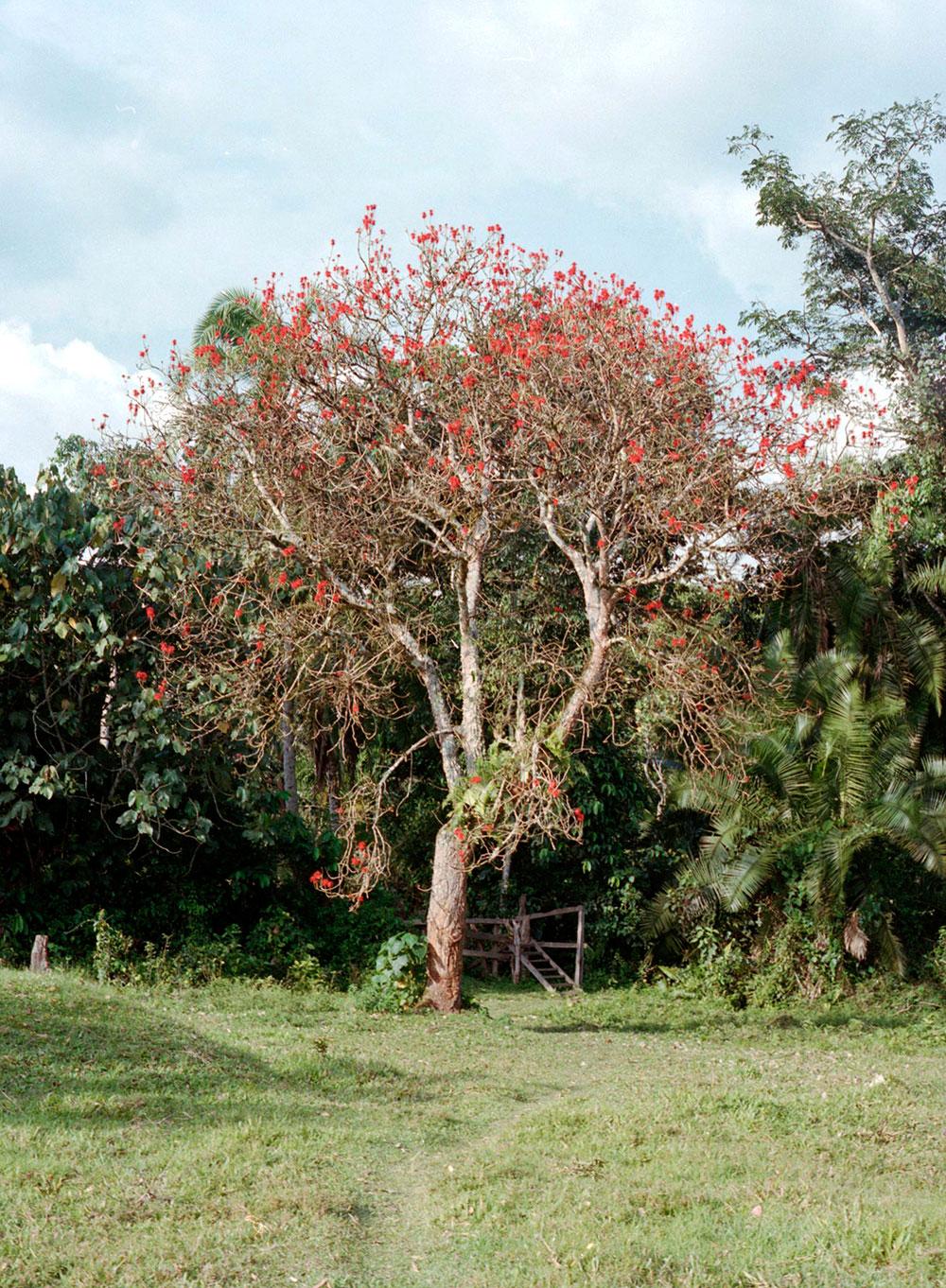 uganda2012-(49).jpg