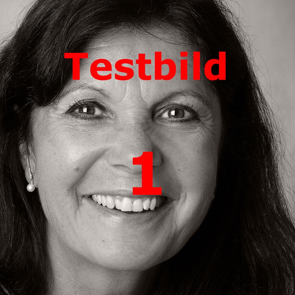 test1_5DSR1793_A_bw_QM.jpg