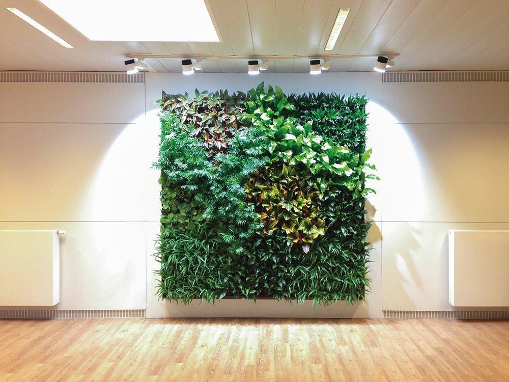 nextgen_-_living-wall-11.jpg