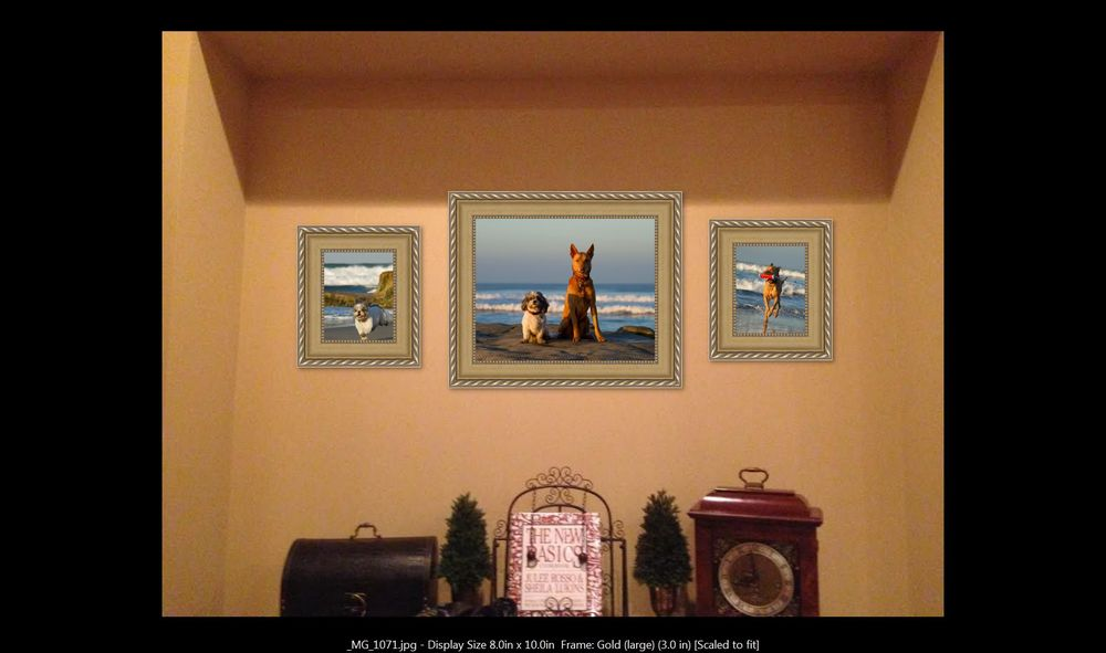 Choosing the correct sizes for this space was quick and easy! She went with one 20x24 flanked by a pair of 11x14's, all in attractive gold frames. Her pets really bring her office alcove space to life!