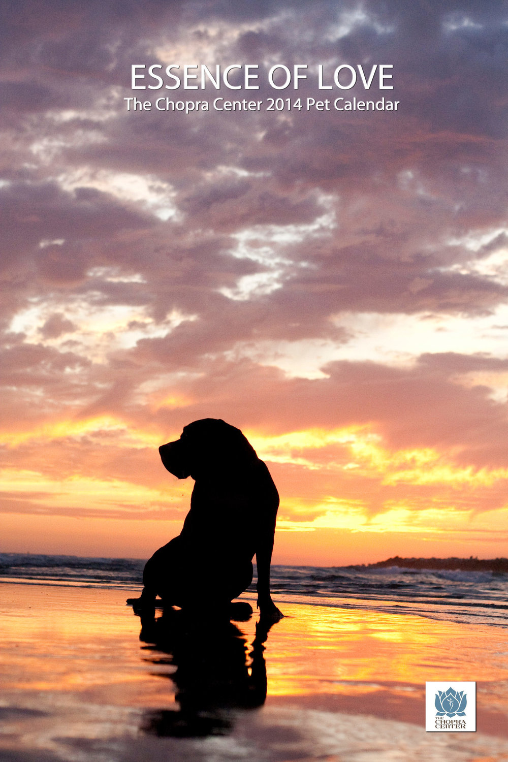 Big Dog Sunset.jpg