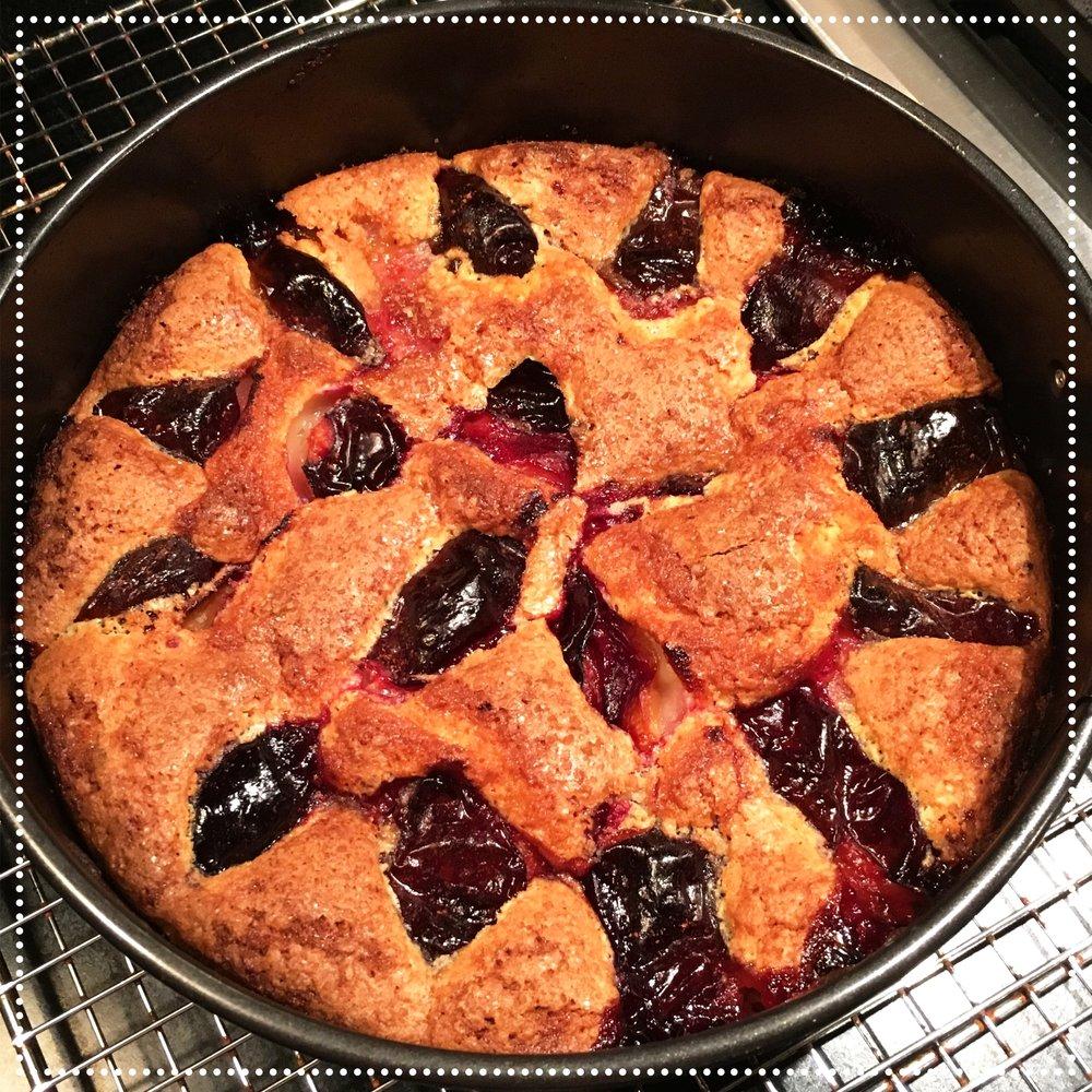 gluten-free italian plum torte