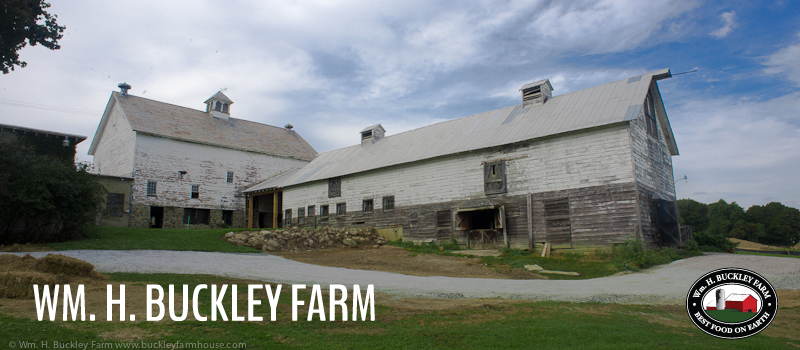 Buckely Farm - Ballston Lake, NY