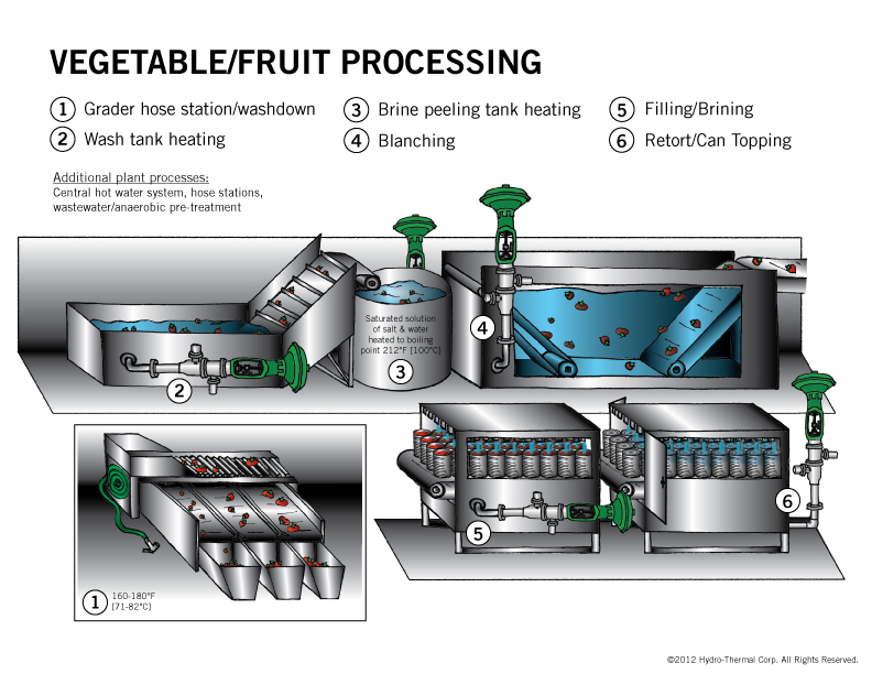 Food_Vegetable_Processing_Diagram.jpg
