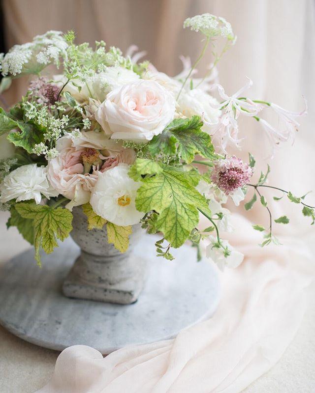 A mock up centerpiece I made for an event~ reminds me of spring :) . . .  #flower #floral #bouquet #whiteandgreen #rose #weddingflorals #centerpiece #photography #kinfolk #fineart #fineartphotography #flowerlove #bayareaweddingplanner #bayareaweddingflorist #sanfranciscoweddingplanner #sanfranciscowedding #elegantflowers #weddingdetails #fineartwedding #fineartflowers #blushtones #tbt #weddingphotography #sanjosewedding #sanfranciscowedding